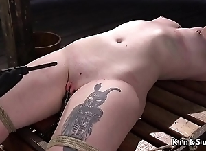 Hogtied plus tabled lackey gets zapper